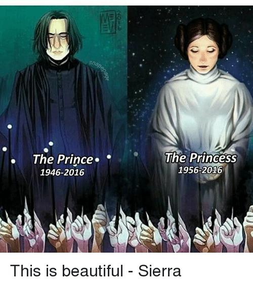 Memes, Prince, and Princess: Snap  The Prince.  The Princess  1956-2016  1946-2016 This is beautiful - Sierra