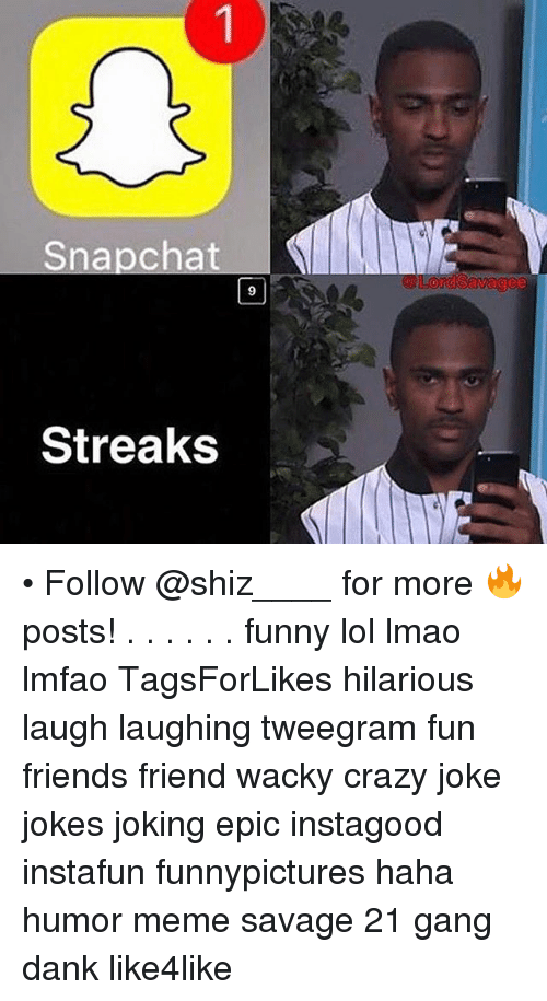 Image of: Funny Animal Crazy Dank And Friends Snapchat Streaks Nme Lord Savage Follow shiz Funny Snapchat Streaks Nme Lord Savage Follow For More Posts Funny