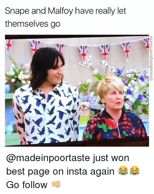 Memes, Best, and 🤖: Snape and Malfoy have really let  themselves go @madeinpoortaste just won best page on insta again 😂😂 Go follow 👊🏼