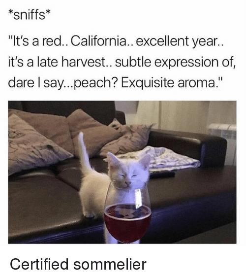 """Funny, California, and Red: *sniffs*  """"It's a red.. California.. excellent year..  it's a late harvest.. subtle expression of  dare l say...peach? Exquisite aroma."""" Certified sommelier"""