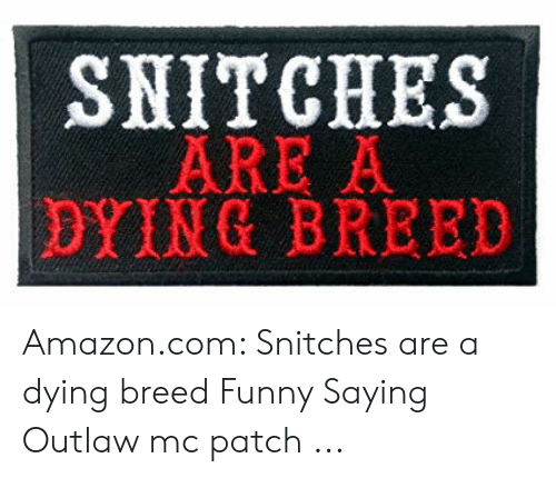 SNITCHES ARE a DYING BREED Amazoncom Snitches Are a Dying