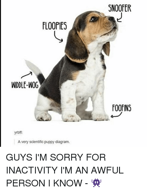 Snoofer floopies widdle wog oofins yrbff a very scientific puppy memes sorry and puppy snoofer floopies widdle wog oofins yrbff a voltagebd Images