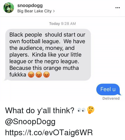 Football, Money, and Bear: snoopdogg  Big Bear Lake City  Today 9:28 AM  Black people should start our  own football league. We have  the audience, money, and  players. Kinda like your little  league or the negro league  Because this orange mutha  fukkka  Feel u  Delivered What do y'all think? 👀🤔 @SnoopDogg https://t.co/evOTaig6WR