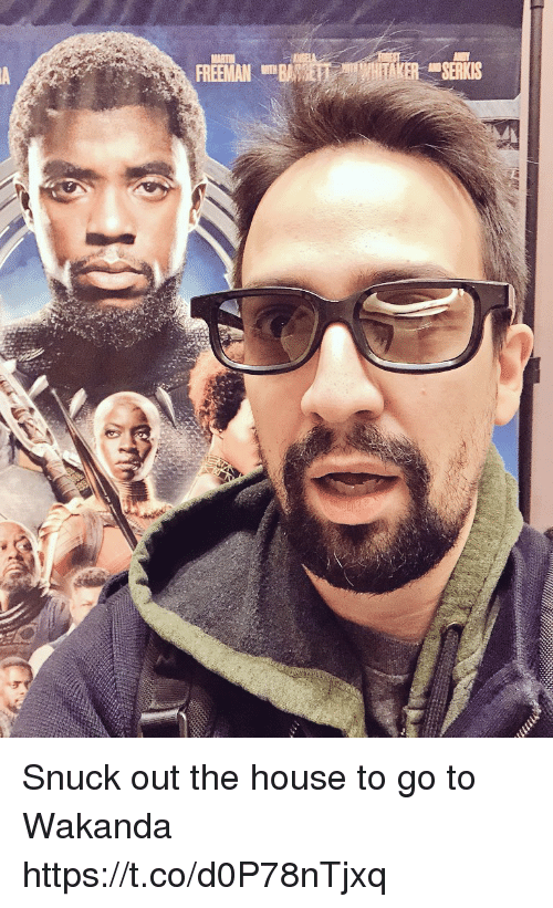 Memes, House, and 🤖: Snuck out the house to go to Wakanda https://t.co/d0P78nTjxq