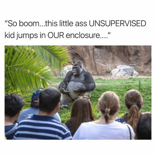 "Ass, Dank, and Boom: ""So boom...this little ass UNSUPERVISED  kid jumps in OUR enclosure...."""