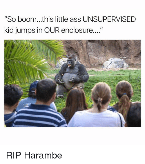 """Ass, Dank, and Boom: """"So boom...this little ass UNSUPERVISED  kid jumps in OUR enclosure RIP Harambe"""
