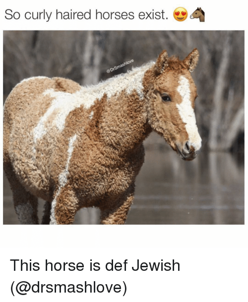 pony jewish personals Dear god, please send me a pony i never asked for anything before you can look it up.