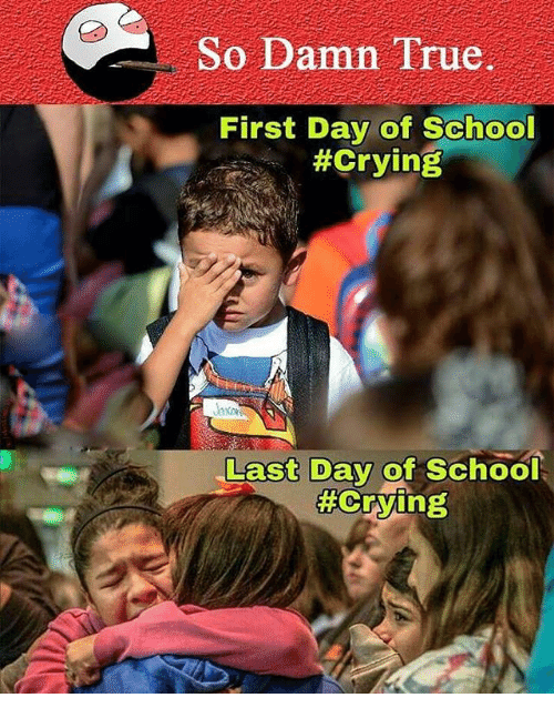 Memes, 🤖, and Last Days: So Damn True.  First Day of School  #Crying  Last Day of School  Crying