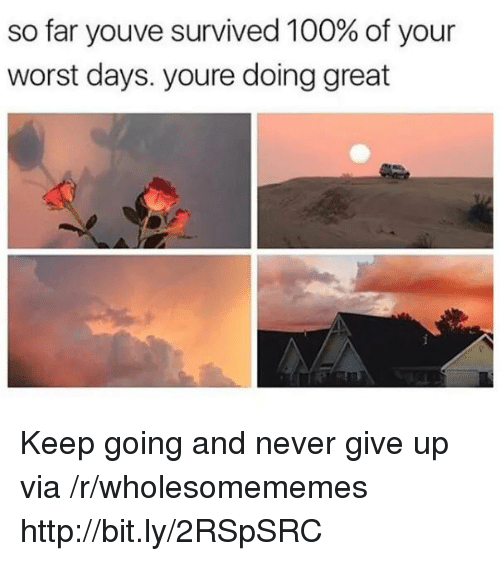 Anaconda, Http, and Never: so far youve survived 100% of your  worst days. youre doing great Keep going and never give up via /r/wholesomememes http://bit.ly/2RSpSRC