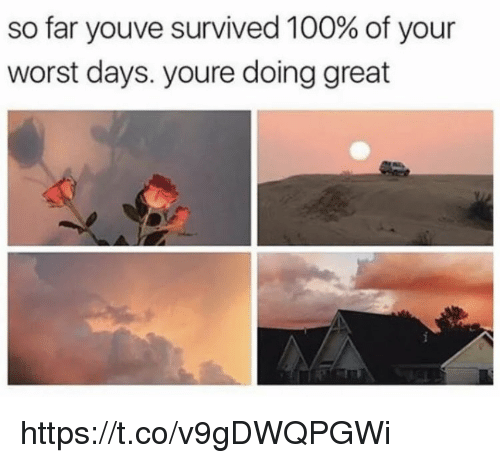 Anaconda, Memes, and 🤖: so far youve survived 100% of your  worst days. youre doing great https://t.co/v9gDWQPGWi