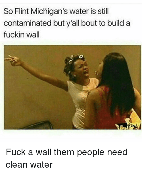 Memes, Michigan, and 🤖: So Flint Michigan's water is still  contaminated but y'all bout to build a  fuckin wall Fuck a wall them people need clean water