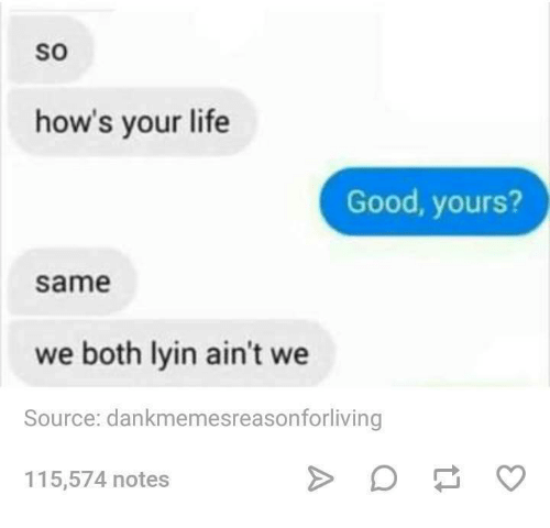 Life, Good, and Humans of Tumblr: SO  how's your life  Good, yours?  same  we both lyin ain't we  Source: dankmemesreasonforliving  115,574 notes