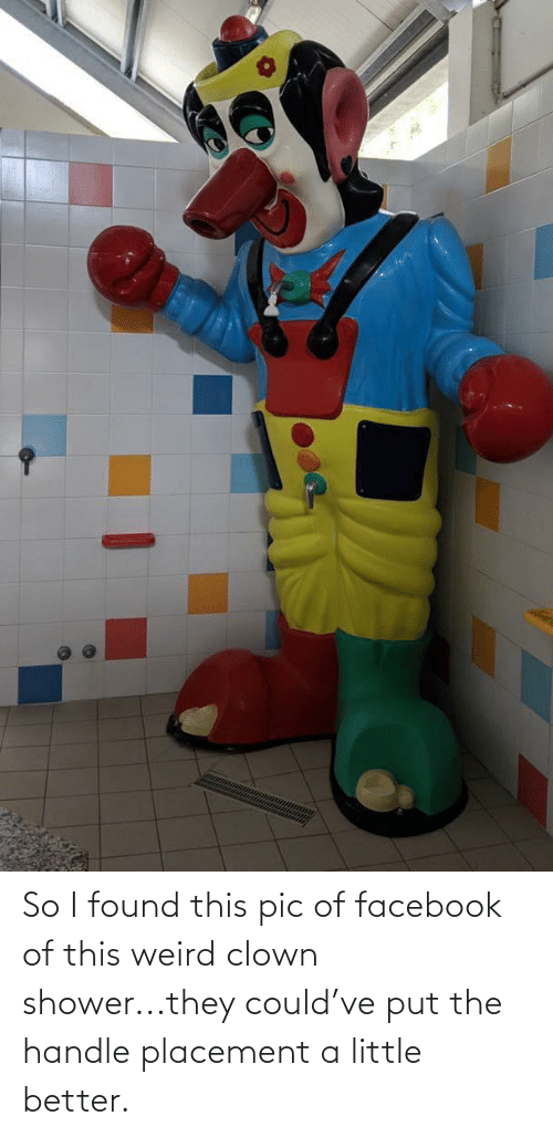 Facebook, Shower, and Weird: So I found this pic of facebook of this weird clown shower...they could've put the handle placement a little better.