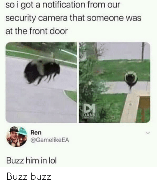 Lol, Camera, and Got: so i got a notification from our  security camera that someone was  at the front door  AN  Ren  @GamelikeEA  Buzz him in lol Buzz buzz