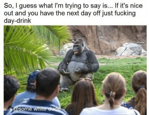 Dank, Dude, and Fucking: So, I guess what I'm trying to say is... If it's nice  out and you have the next day off just fucking  day-drink  @some white dude