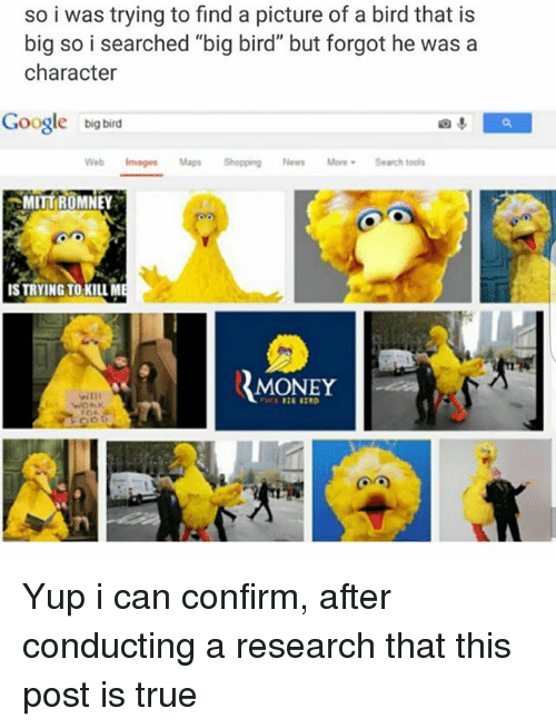 "Google, Memes, and Money: so i was trying to find a picture of a bird that is  big so i searched ""big bird"" but forgot he was a  character  Google big bird  Web Images Maps Shopping News MoreSearch tools  MITT{ROMNEY  IS TRYING TO KILLM  MONEY Yup i can confirm, after conducting a research that this post is true"