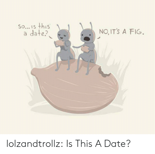 Tumblr, Blog, and Date: So... Is this  a date?  NO, IT'S A FIG. lolzandtrollz:  Is This A Date?