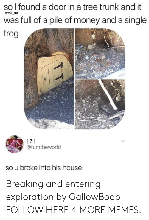 Dank, Memes, and Money: so l found a door in a tree trunk and it  was full of a pile of money and a single  frog  @will ent  L?1  @tumtheworld  so u broke into his house Breaking and entering exploration by GallowBoob FOLLOW HERE 4 MORE MEMES.