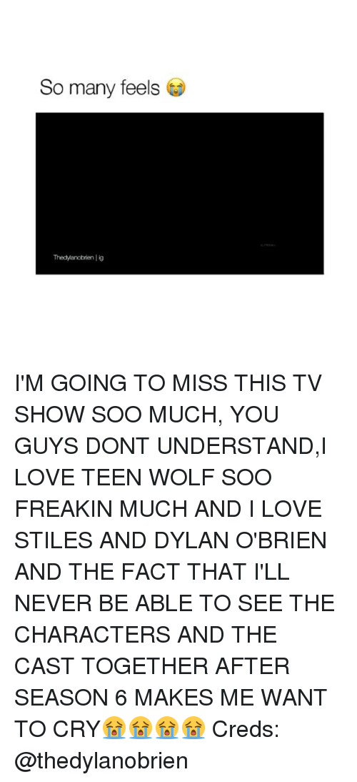 Dylan O'Brien, Love, and Memes: So many feels  Thedyanobrien lig I'M GOING TO MISS THIS TV SHOW SOO MUCH, YOU GUYS DONT UNDERSTAND,I LOVE TEEN WOLF SOO FREAKIN MUCH AND I LOVE STILES AND DYLAN O'BRIEN AND THE FACT THAT I'LL NEVER BE ABLE TO SEE THE CHARACTERS AND THE CAST TOGETHER AFTER SEASON 6 MAKES ME WANT TO CRY😭😭😭😭 Creds: @thedylanobrien