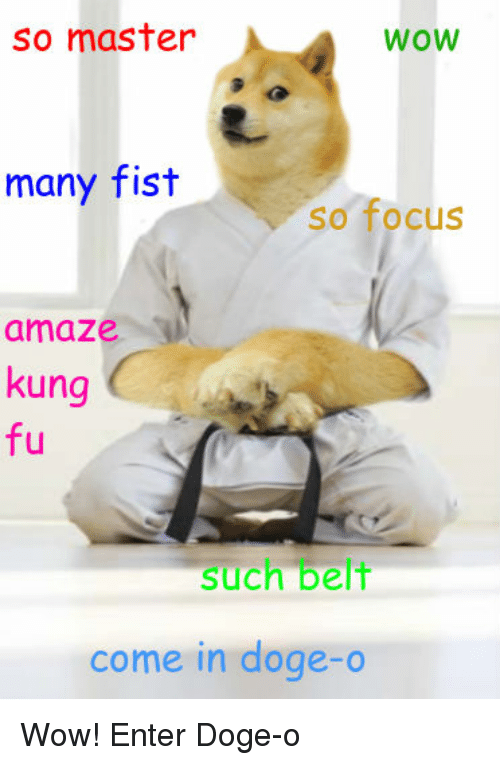 So Master WOW Many Fist So Focus Amaze Kung Fu Such Belt Come in