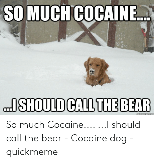 Image result for bear stearns cocaine