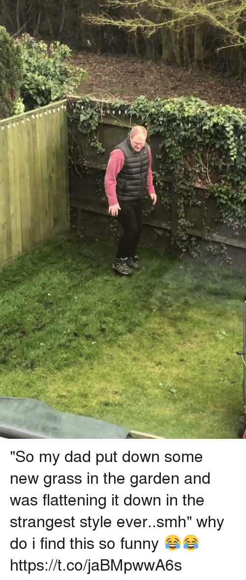 "Dad, Funny, and Smh: ""So my dad put down some new grass in the garden and was flattening it down in the strangest style ever..smh"" why do i find this so funny 😂😂 https://t.co/jaBMpwwA6s"