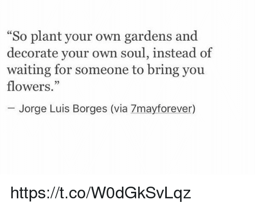 """Flowers, Girl Memes, and Waiting...: So plant your own gardens and  decorate your own soul, instead of  waiting for someone to bring you  flowers.""""  Jorge Luis Borges (via 7mayforever) https://t.co/W0dGkSvLqz"""