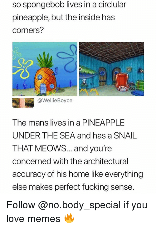 Fucking, Funny, and Love: so spongebob lives in a circlular  pineapple, but the inside has  corners?  S0  @WellieBoyce  The mans lives in a PINEAPPLE  UNDER THE SEA and has a SNAIL  THAT MEOWS... and you're  concerned with the architectural  accuracy of his home like everything  else makes perfect fucking sense. Follow @no.body_special if you love memes 🔥