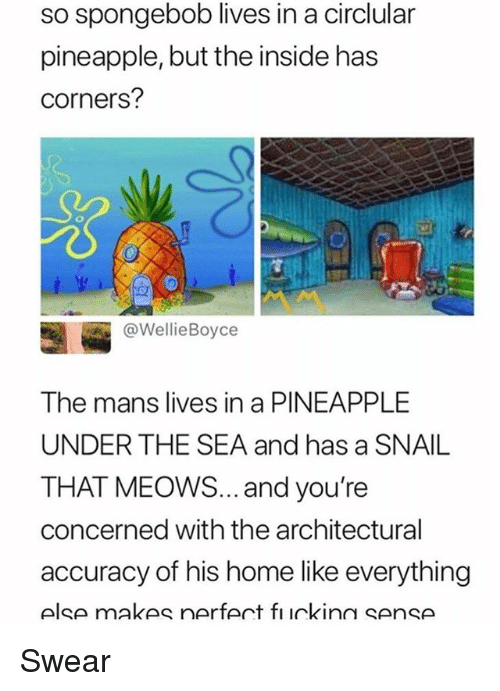 Memes, SpongeBob, and Home: so spongebob lives in a circlular  pineapple, but the inside has  corners?  @WellieBoyce  The mans lives in a PINEAPPLE  UNDER THE SEA and has a SNAIL  THAT MEOWS... and you're  concerned with the architectural  accuracy of his home like everything  else makes nerfert fı ickinn sense Swear
