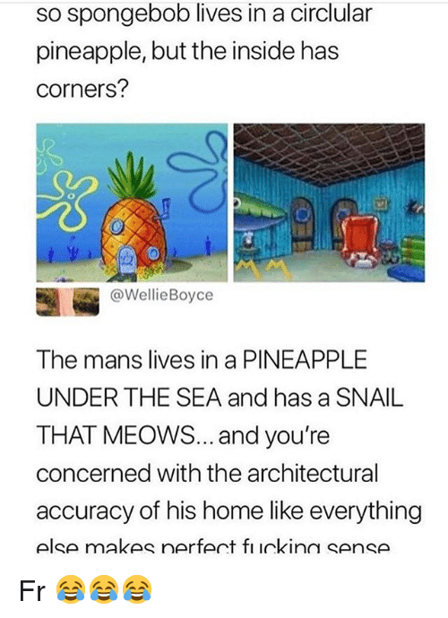 Funny, SpongeBob, and Home: so spongebob lives in a circlular  pineapple, but the inside has  corners?  @WellieBoyce  The mans lives in a PINEAPPLE  UNDER THE SEA and has a SNAIL  THAT MEOWS... and you're  concerned with the architectural  accuracy of his home like everything  else makes nerfert fı ickinn sense Fr 😂😂😂