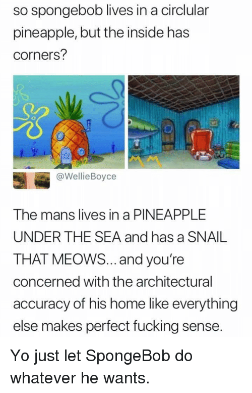 Fucking, SpongeBob, and Yo: so spongebob lives in a circlular  pineapple, but the inside has  corners?  @WellieBoyce  The mans lives in a PINEAPPLE  UNDER THE SEA and has a SNAIL  THAT MEOWS... and you're  concerned with the architectural  accuracy of his home like everything  else makes perfect fucking sense. Yo just let SpongeBob do whatever he wants.