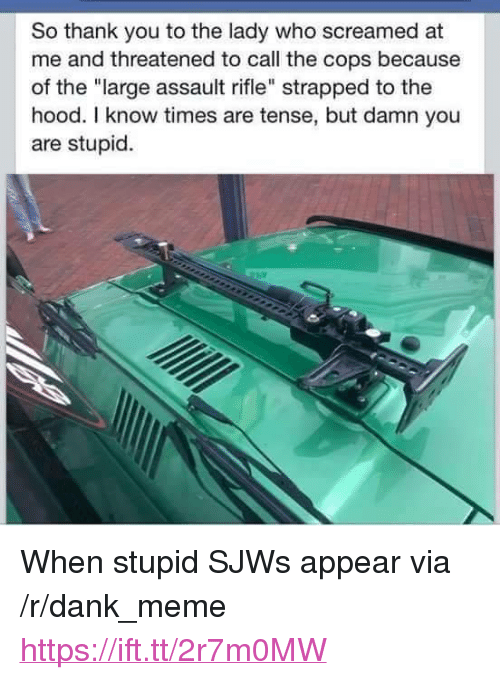 """Dank, Meme, and The Hood: So thank you to the lady who screamed at  me and threatened to call the cops because  of the """"large assault rifle"""" strapped to the  hood. I know times are tense, but damn you  are stupid. <p>When stupid SJWs appear via /r/dank_meme <a href=""""https://ift.tt/2r7m0MW"""">https://ift.tt/2r7m0MW</a></p>"""