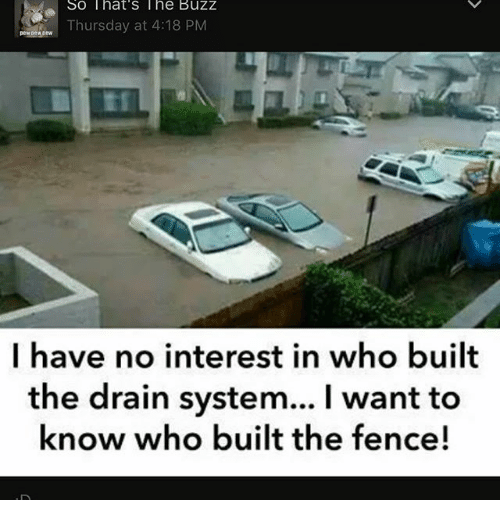 Memes, 🤖, and Who: So That's The Buzz  Thursday at 4:18 PM  I have no interest in who built  the drain system... I want to  know who built the fence!