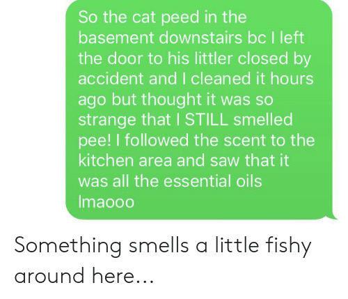 Saw, Thought, and All The: So the cat peed in the  basement downstairs bc I left  the door to his littler closed by  accident and I cleaned it hours  ago but thought it was so  strange that I STILL smelled  pee! I followed the scent to the  kitchen area and saw that it  was all the essential oils  Imaooo Something smells a little fishy around here...