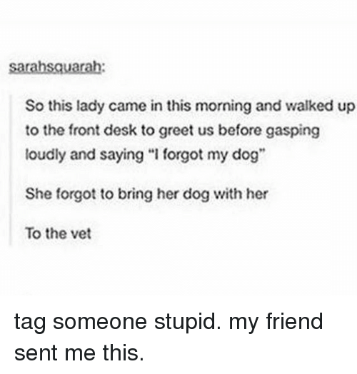"""Tumblr, Desk, and Tag Someone: So this lady came in this morning and walked up  to the front desk to greet us before gasping  loudly and saying """"I forgot my dog""""  She forgot to bring her dog with her  To the vet tag someone stupid. my friend sent me this."""