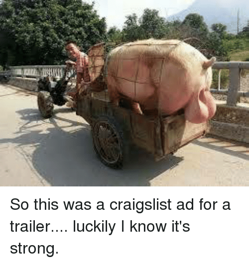 So This Was a Craigslist Ad for a Trailer Luckily I Know It's Strong