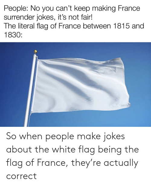 France, Jokes, and White: So when people make jokes about the white flag being the flag of France, they're actually correct