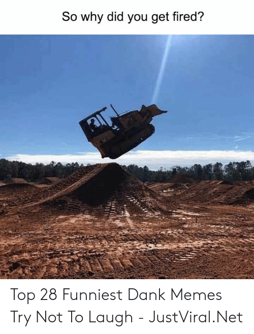 Dank, Memes, and Dank Memes: So why did you get fired? Top 28 Funniest Dank Memes Try Not To Laugh - JustViral.Net
