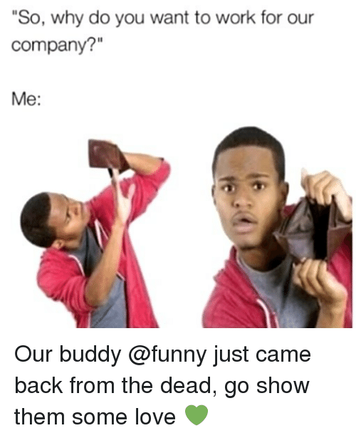 """Funny, Love, and Memes: """"So, why do you want to work for our  company?""""  Me: Our buddy @funny just came back from the dead, go show them some love 💚"""