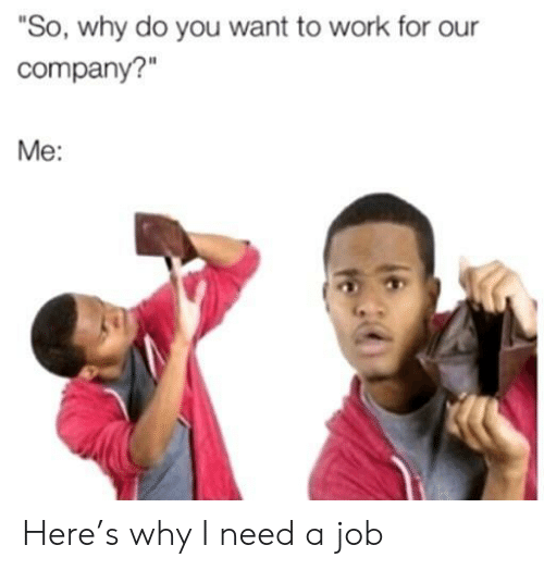 """Work, Job, and Company: """"So, why do you want to work for our  company?""""  Me: Here's why I need a job"""