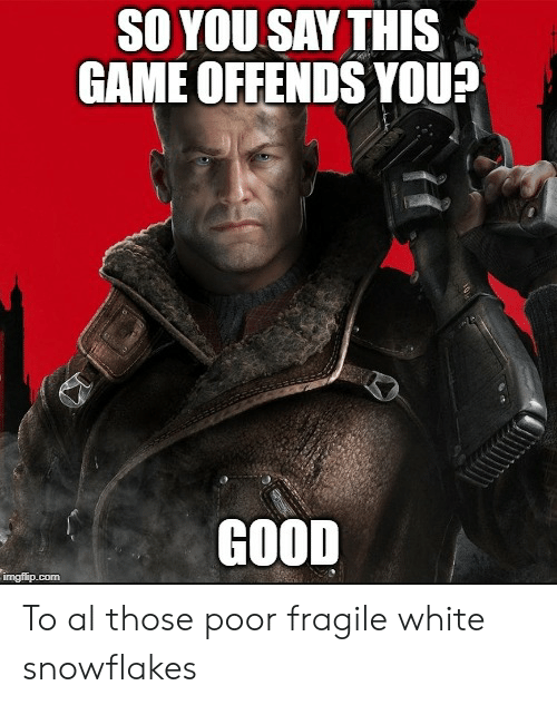 Game, Good, and White: SO YOU SAY THIS  GAME OFFENDS YOU?  GOOD  ingflip.com To al those poor fragile white snowflakes