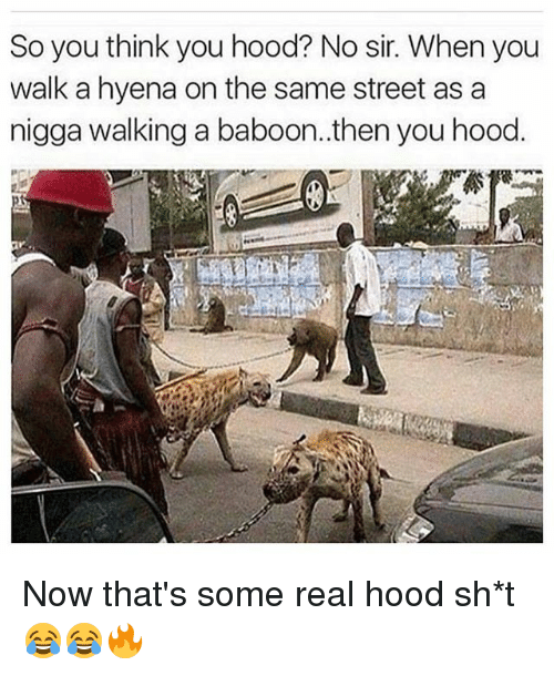 Memes, Hood, and 🤖: So you think you hood? No sir. When you  walk a hyena on the same street as a  nigga walking a baboon..thenyou hood. Now that's some real hood sh*t 😂😂🔥