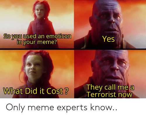Funny, Meme, and Yes: So you used an emoticon  in your meme?  Yes  They call me a  Terrorist now  What Did it Cost? Only meme experts know..