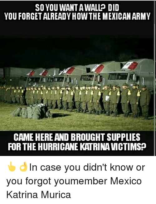 Memes, Hurricane Katrina, and Hurricane: SO YOU WAN TAWALL DID  YOU FORGETALREADYHOWTHE MEXICAN ARMY  CAME HERE AND BROUGHT SUPPLIES  FOR THE HURRICANE KATRINA VMCTIMS? 👆👌In case you didn't know or you forgot youmember Mexico Katrina Murica