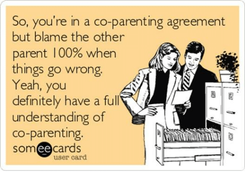 So Youre In A Co Parenting Agreement But Blame The Other Parent 100