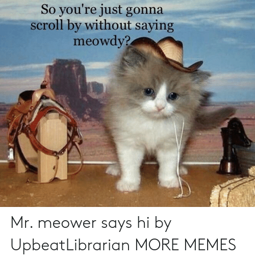 Dank, Memes, and Target: So you're just gonna  scroll by without saying  meowdv? Mr. meower says hi by UpbeatLibrarian MORE MEMES
