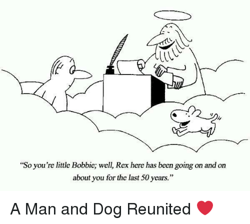 "Been, Dog, and Man: ""So you're little Bobbie; well, Rex here has been going on and on  about you for the last 50 years."" A Man and Dog Reunited ❤"