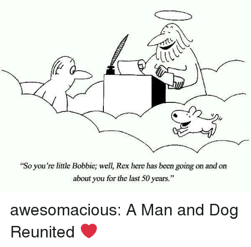 "Tumblr, Blog, and Http: ""So you're little Bobbie; well, Rex here has been going on and on  about you for the last 50 years."" awesomacious:  A Man and Dog Reunited ❤"