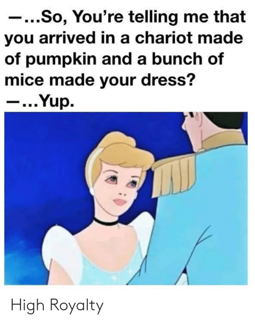 Dress, Pumpkin, and You: ...So, You're telling me that  you arrived in a chariot made  of pumpkin and a bunch of  mice made your dress?  - ...Yup. High Royalty