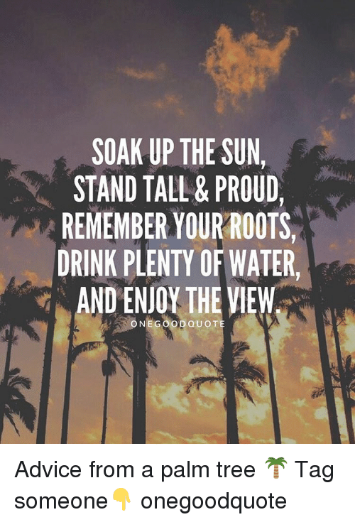 Soak Up The Sun Stand Tall Proud Remember Your Roots Drink Plenty